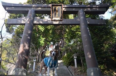 20171218伊豆山神社05