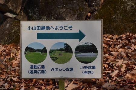 20171221小山田緑地04