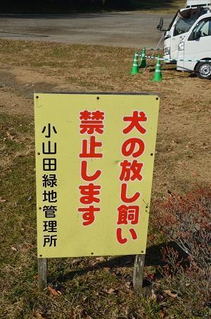 20171221小山田緑地20
