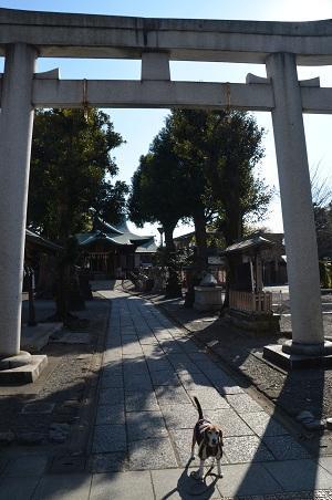 20171221町田七福神02