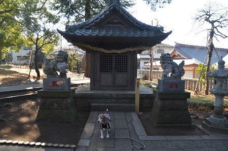 20171221菅原神社28