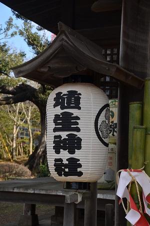 20180109埴生神社12