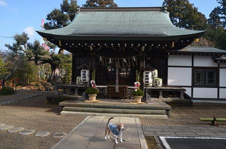 20180109埴生神社09