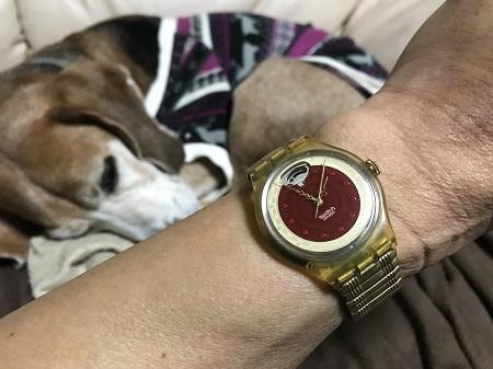 20180115swatch09