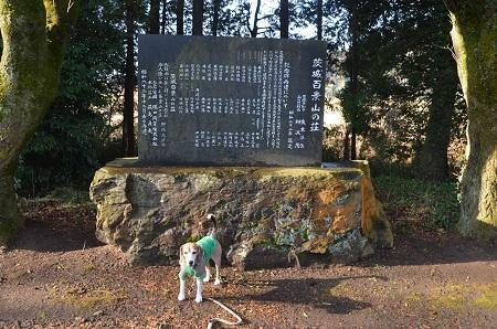 20180118茨城百景山の荘11