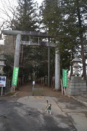 0180118常陸國総社宮03