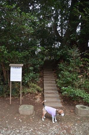 20180122宗像神社16