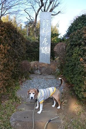 20180210佐倉の坂道23