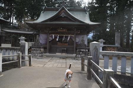20180216加波山三枝祇神社11