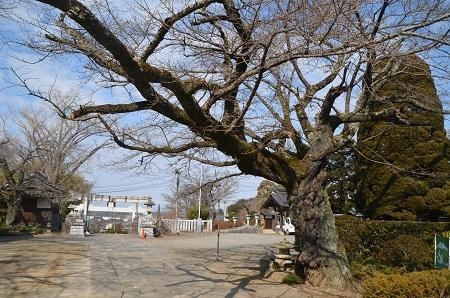 20180216加波山三枝祇神社08