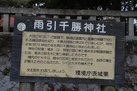20180216雨引千勝神社04