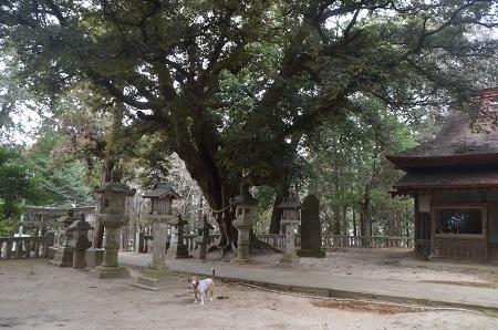 20180216雨引千勝神社19