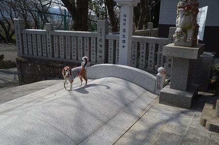 20180216加波山普明神社&加波山神社21