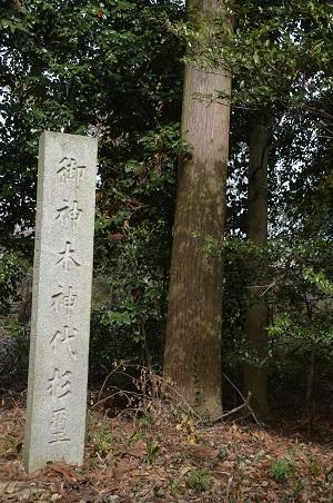 20180216大國玉神社22