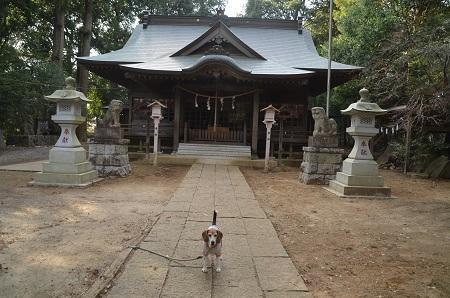20180216鴨鳥五所神社18