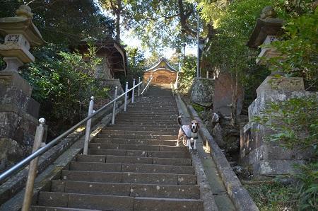 20180219諏訪神社08