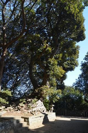20180219諏訪神社29
