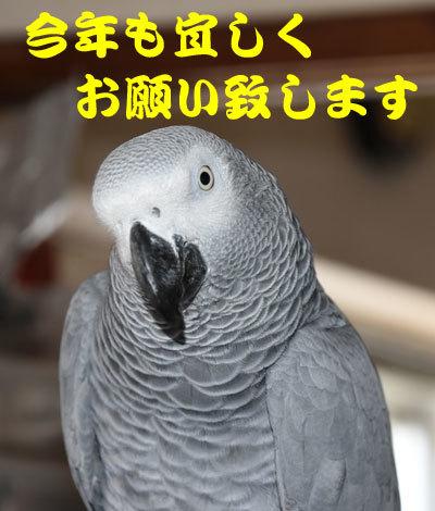 8_あいさつ