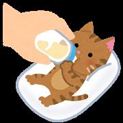 ネコ(哺乳瓶