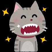 ネコ(歯がキレイ