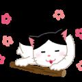 ネコ(じゃれる
