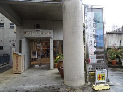 2018沖縄1 (29)
