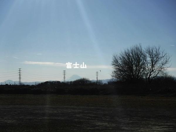 DSCF1805散歩