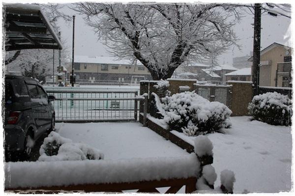 003大雪