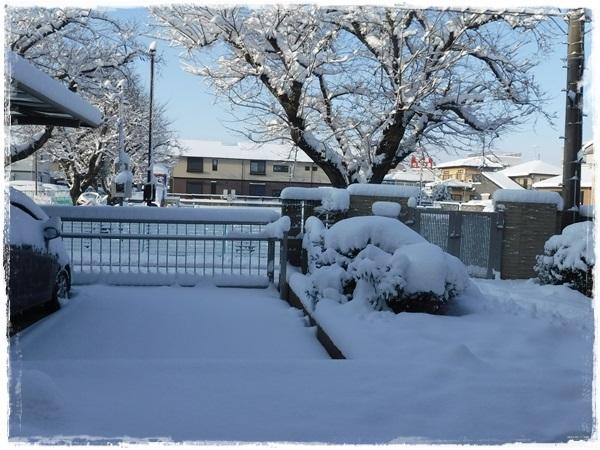 DSCF1838大雪