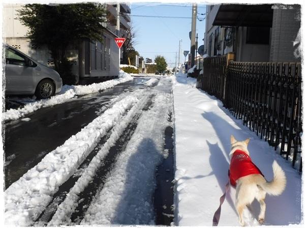 DSCF1844大雪