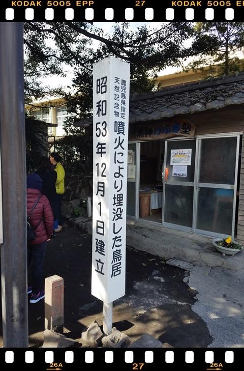 桜島鳥居3