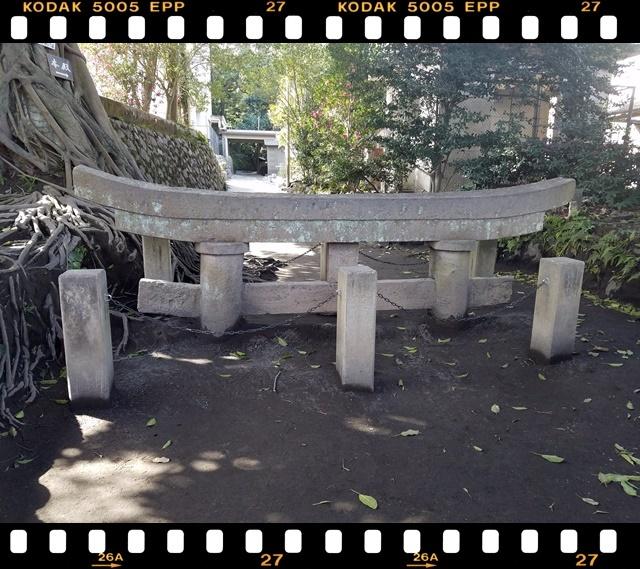 桜島鳥居4