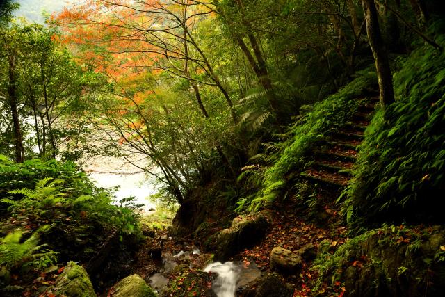 山歩き(2)