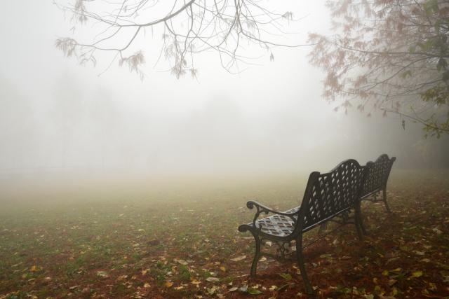 ベンチのある風景(2)