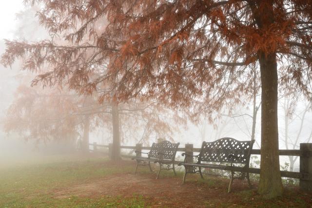 ベンチのある風景(1)