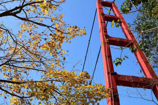 吊り橋のある風景(2)