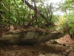 弥山:舟岩