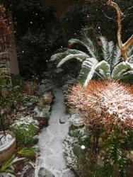2018.01.22 初雪