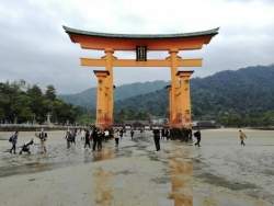 厳島神社:大鳥居