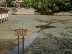 厳島神社:鏡の池