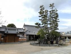 宮島:大願寺の九本松