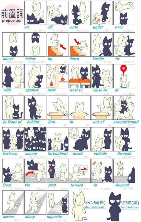 ネコ2匹の関係性で前置詞をわかりやすく説明するイラスト