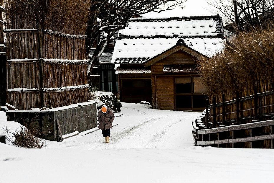 2018.01.11 雪の上大沢 2