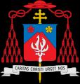 白柳枢機卿