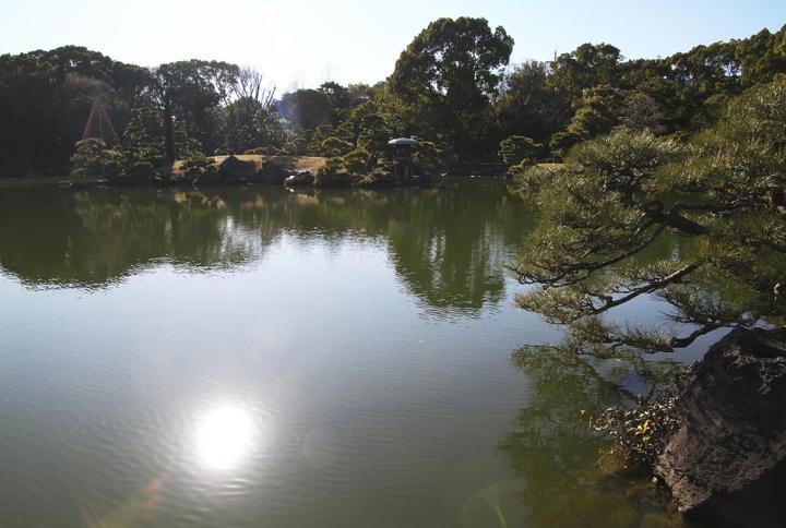 清澄庭園-022