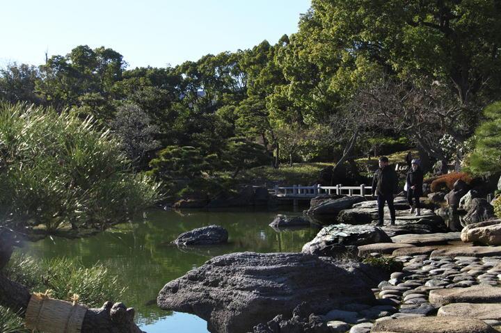 清澄庭園-026