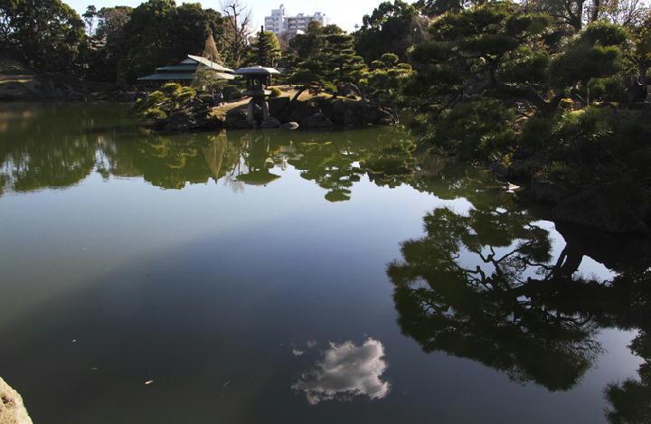 清澄庭園-044