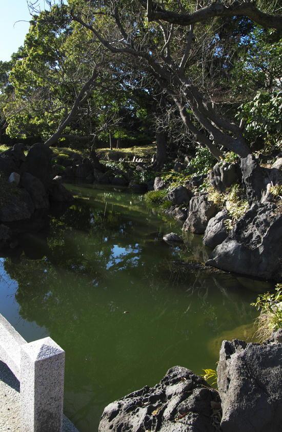 清澄庭園-042