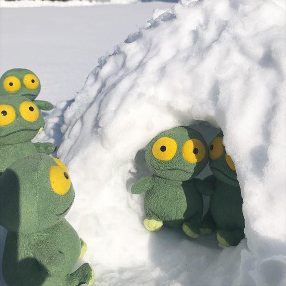 ゆうブログケロブログ大雪Jan2018 (4)