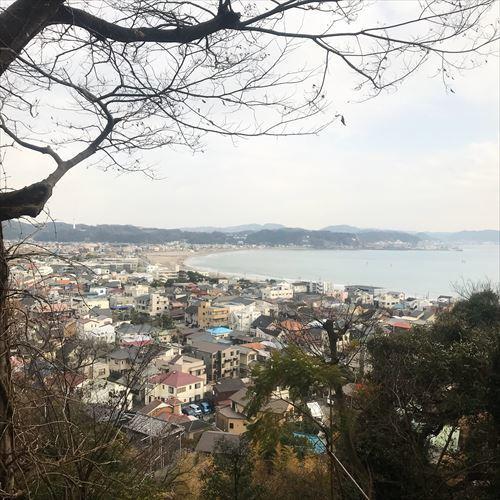 ゆうブログケロブログ鎌倉JAN2018 (13)